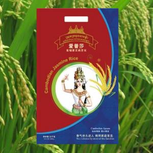 Hung Hiep (Cambodia) 柬埔寨馨合 - Rice